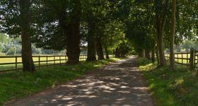 Gorhambury Drive