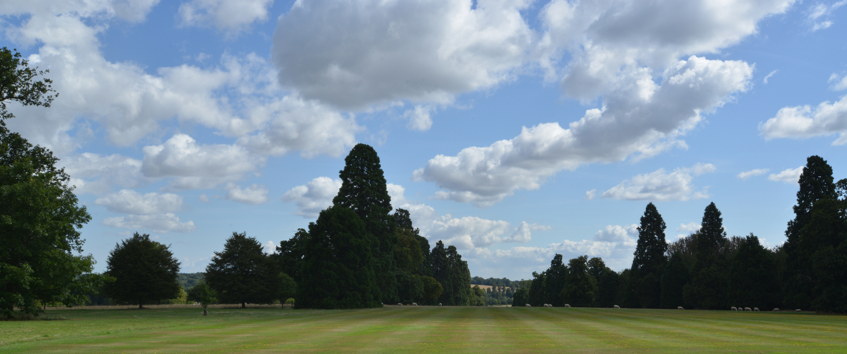 The front lawn at Gorhambury Estate, St Albans