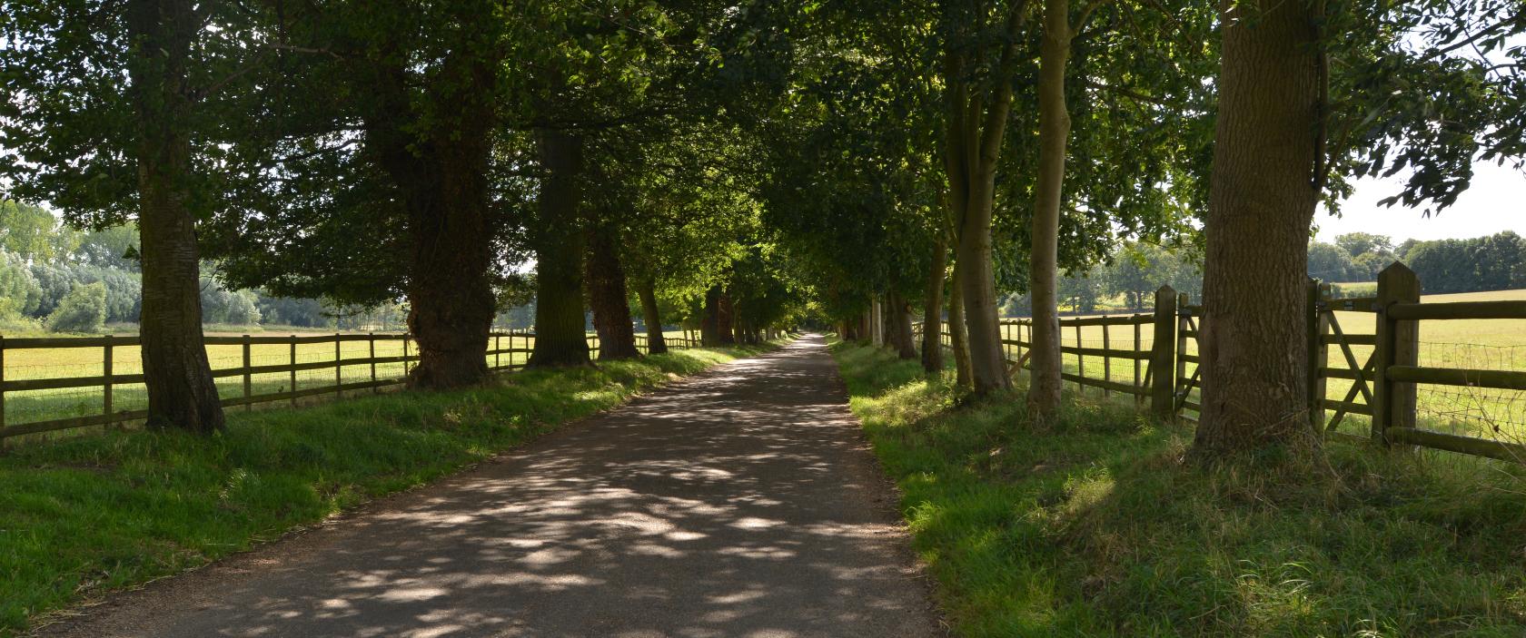 Gorhambury Drive, part of Gorhambury Estate, St Albans